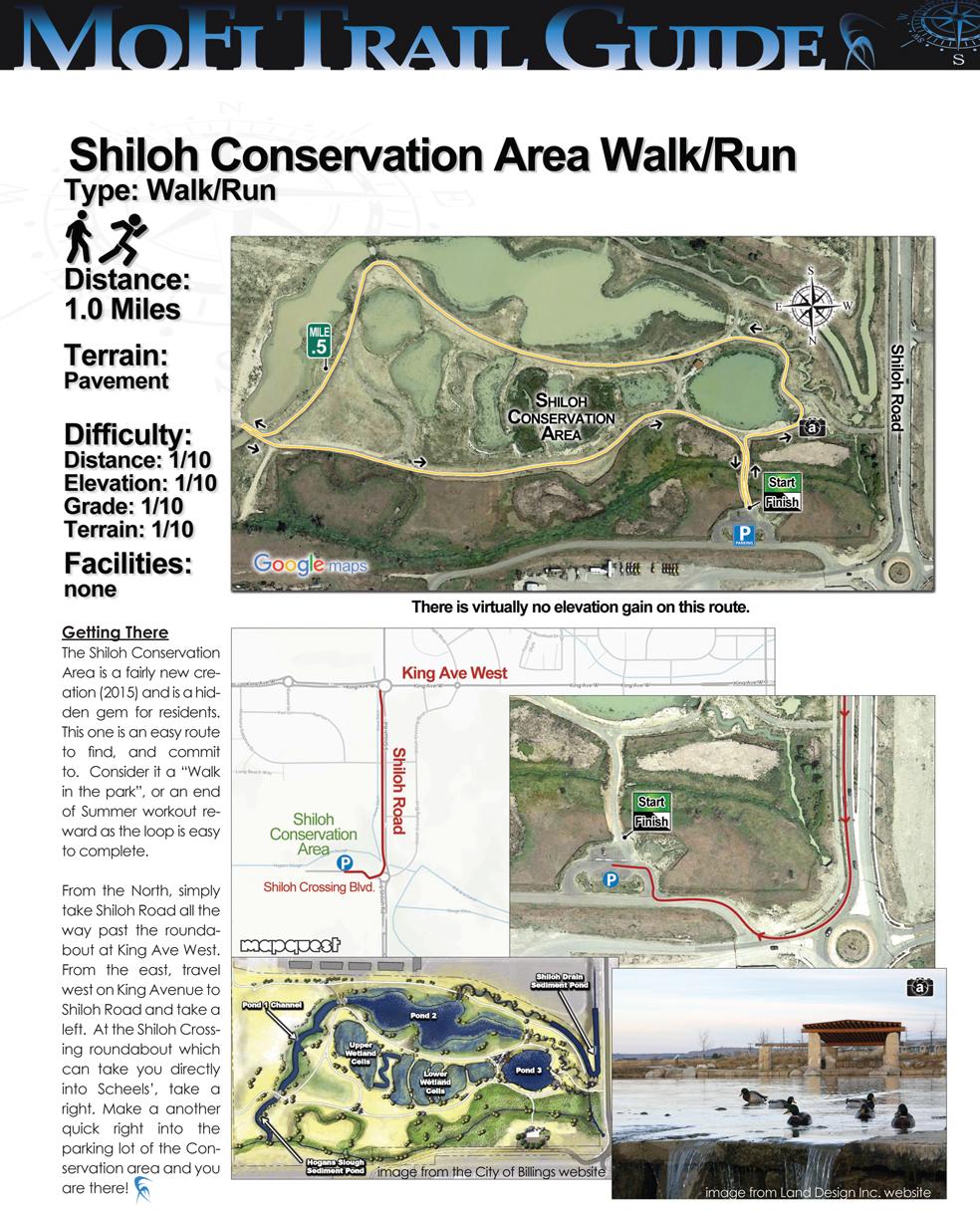 shiloh trail.jpg