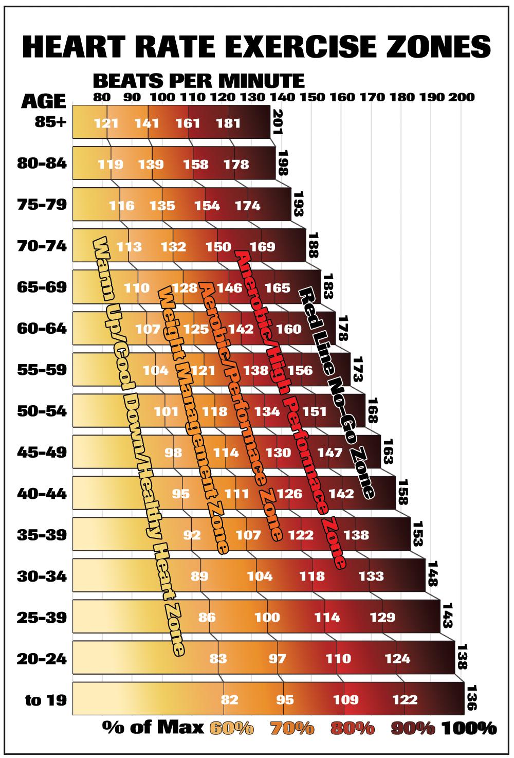 Beats per minute.jpg