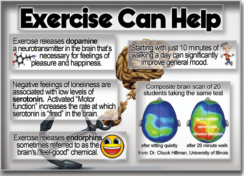 Exercise Anchor Infographic