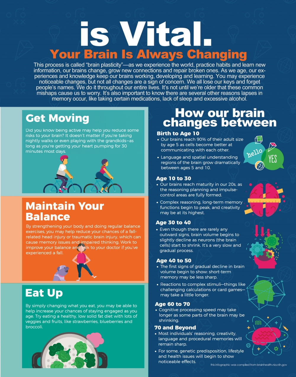 Brain Health Infographic2